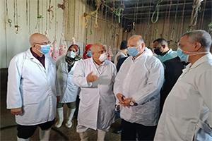 محافظ القاهرة يتفقد مجزر البساتين الالي لإستقبال أضاحي عيد الأضحى المبارك